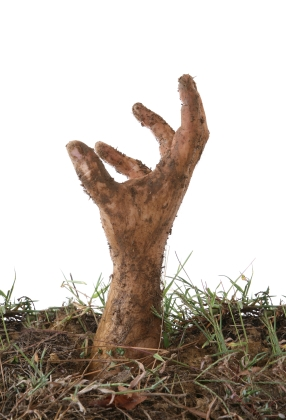 zombie hand rising from ground
